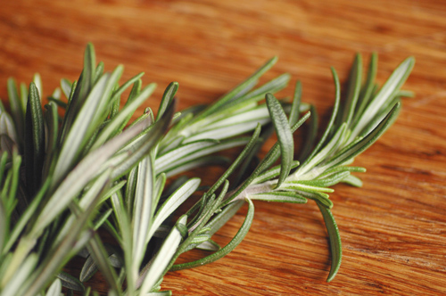 Fresh rosemary picked for the chickpea soup.