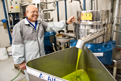 Tirenzio makes sure the olive oil pressing process runs smoothly and that all olive oil gets to the right Adoptive parents.